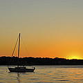 Sailboat Silhouette by Terry DeLuco