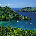 Sailboats Anchored In A Cove Of Blue by Tim Laman