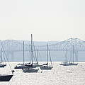 Sailboats And The Tappan Zee Bridge by Bill Cannon