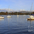 Sailboats At Anchor In Bowness On Windermere by Louise Heusinkveld