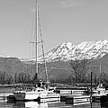 Sailboats At Utah Lake State Park by Tracie Kaska
