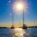Sailboats by Betsy Knapp