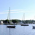Sailboats In Bay by Ronald Grogan