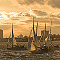 Sailboats On Lake Ontario At Sunset by Richard Nowitz