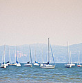 Sailboats On The Hudson - Nyack New York by Bill Cannon