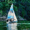 Sailing Cave Run Lake by Anne Kitzman