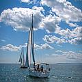 Sailing by Cindy Haggerty