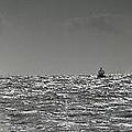 Sailing Home by Nigel Jones