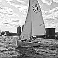 Sailing On The Charles by Scott Hervieux
