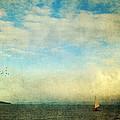 Sailing On The Sea by Michele Cornelius
