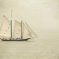 Sailing Ship by Hannes Cmarits