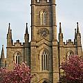 Saint Fin Barres Cathedral Cork 13 by Douglas Barnett