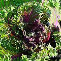 Salad Maker by Susan Herber