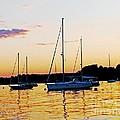 Salem Harbor Amber Sunset by Lizi Beard-Ward