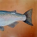 Salmon 2 by Andrew Drozdowicz