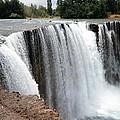 Salto Del Laja - Waterfall by Ronald Osborne