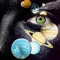 Same Universe by Semmick Photo