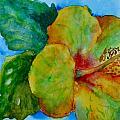 San Diego Hibiscus Study I Underwater by Beverley Harper Tinsley