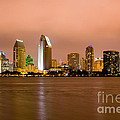 San Diego Skyline At Night by Paul Velgos