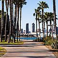 San Diego Skyline With Coronado Island Bayshore Bikeway by Paul Velgos