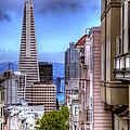 San Francisco by Anthony Citro