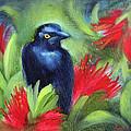 San Francisco Black Bird by Karin  Leonard