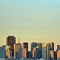 San Francisco Cityline by Rima Biswas