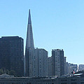 San Francisco Collection #24 by Raquel Amaral