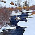 San Juan River At At Last Ranch by John Wright