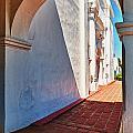 San Luis Rey Courtyard by Sandra Bronstein