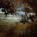 Sanctuary By The River by Ellen Heaverlo