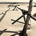 Sand And Fences by Heather Applegate