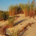 Sand Dune II - Jersey Shore by Angie Tirado