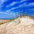 Sand Dune  by Joan Meyland