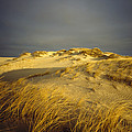 Sand Dunes And Beach Grass In Golden by James P. Blair
