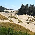 Sand Dunes by Athena Mckinzie