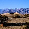 Sand Dunes In Death Valley by Eric Tressler