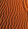 Sand Maze by Alistair Lyne