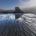 Sand Sculptures by Debra and Dave Vanderlaan