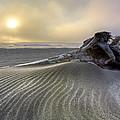 Sand Wrinkles by Debra and Dave Vanderlaan
