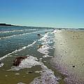 Sandsplit Beach Lowtide by Sheri McLeroy