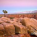 Sandstone Puzzle by Idaho Scenic Images Linda Lantzy