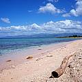 Sandy Beach by Philip G