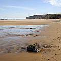 Sandy Beach by Svetlana Sewell