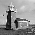 Santa Cruz Lighthouse - Black And White by Carol Groenen