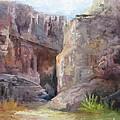 Santa Elena Canyon Big Bend by Barbara Haviland