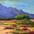 Santa Rosa Mountains In Spring by Diane McClary