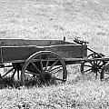 Sap Wagon by Daisy Smith