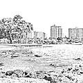 Sarasota Sketch by Betsy Knapp