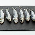 Sardines On Chopping Board by Westend61